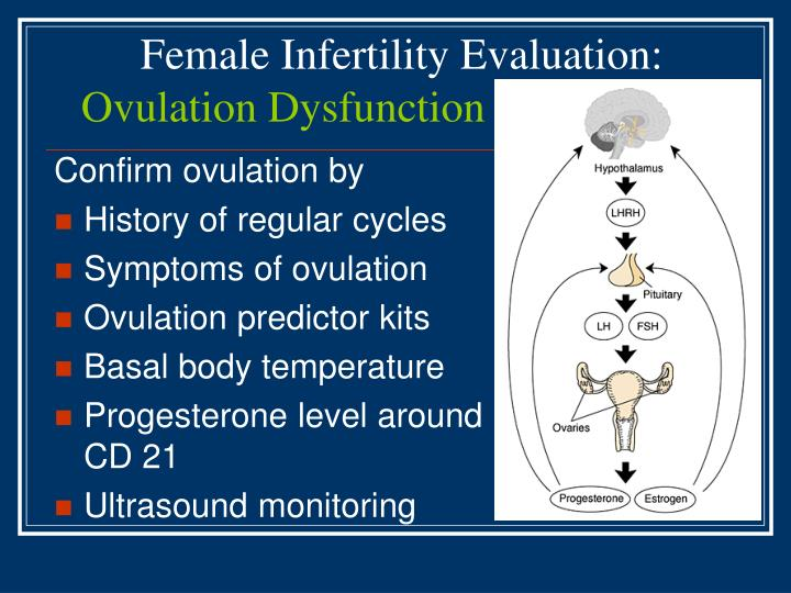 Female Infertility Evaluation: