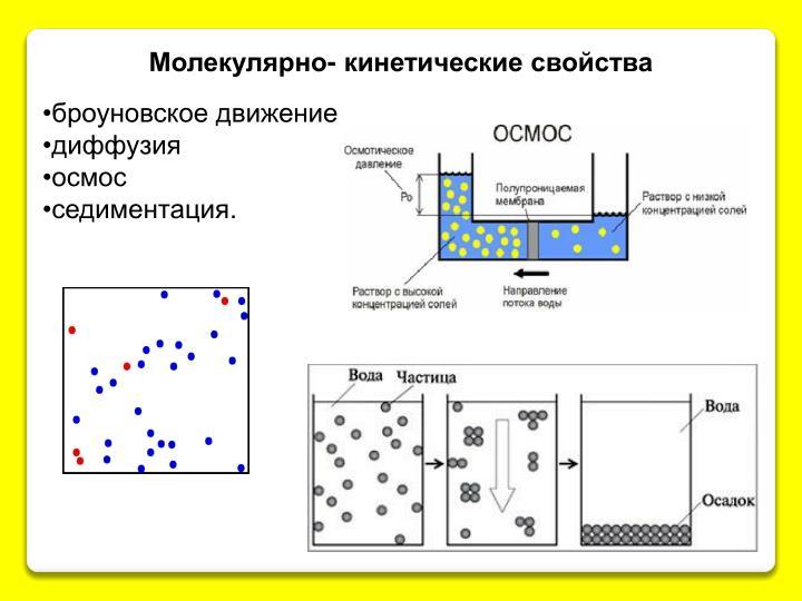 Молекулярно- кинетические свойства