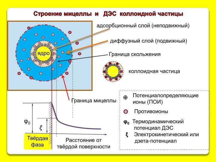Строение мицеллы  и   ДЭС  коллоидной частицы