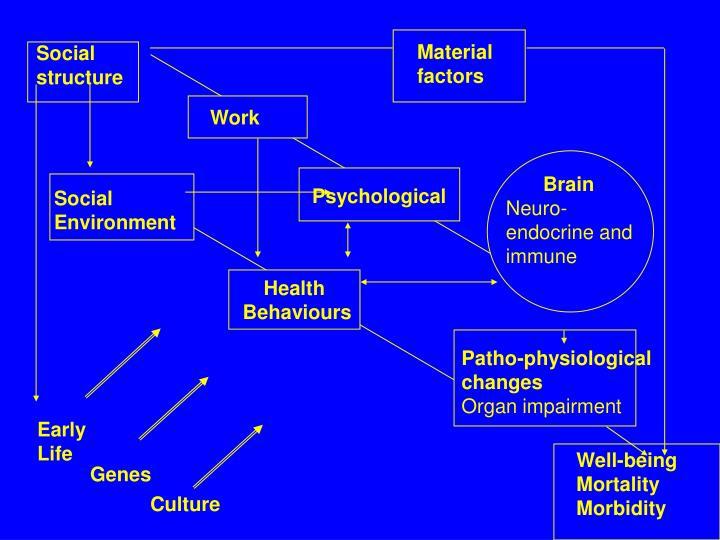 Material factors