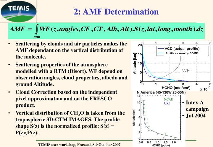 2: AMF Determination
