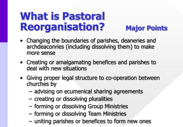 What is Pastoral Reorganisation?