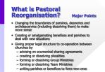 what is pastoral reorganisation major points