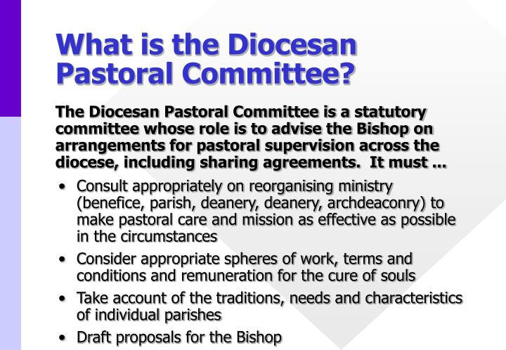 What is the Diocesan Pastoral Committee?