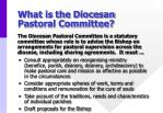 what is the diocesan pastoral committee