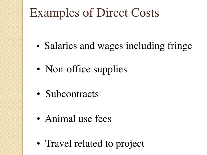 Examples of Direct Costs