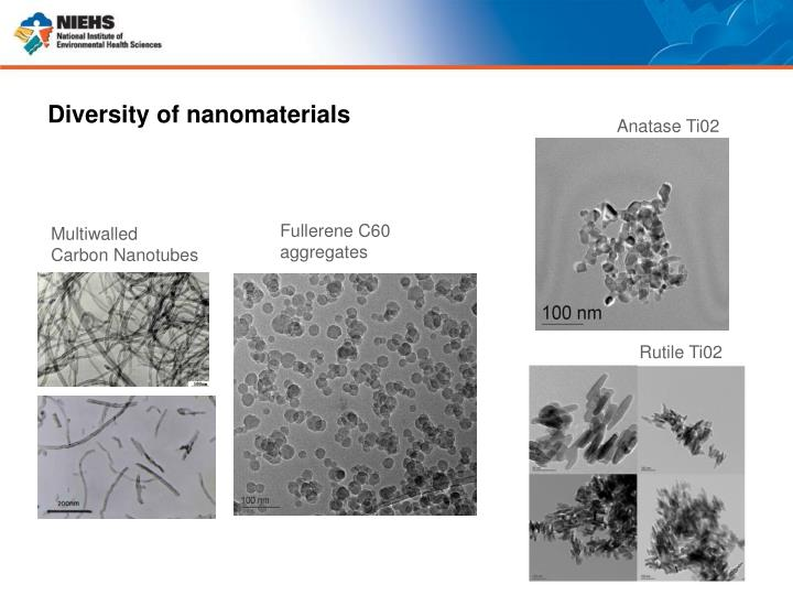 Diversity of nanomaterials