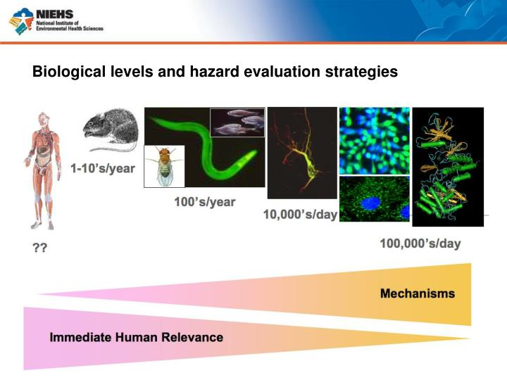 Biological levels and hazard evaluation strategies