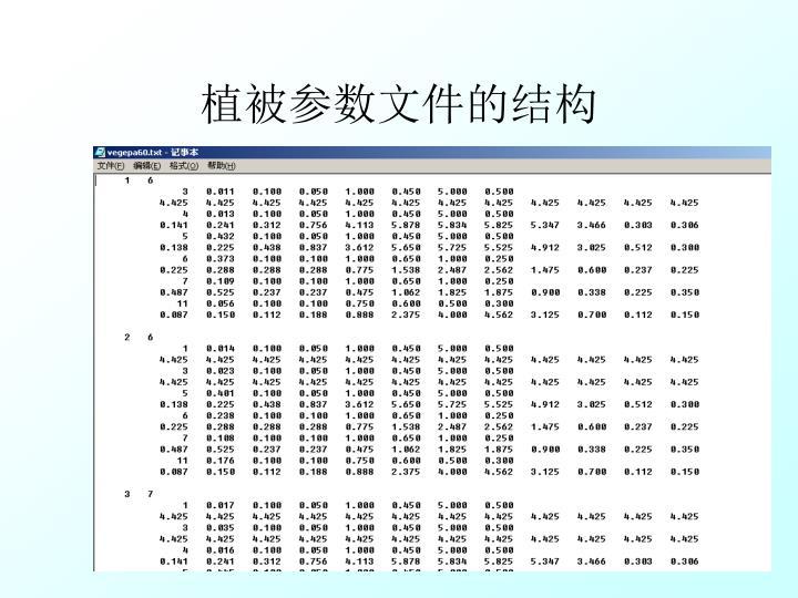 植被参数文件的结构