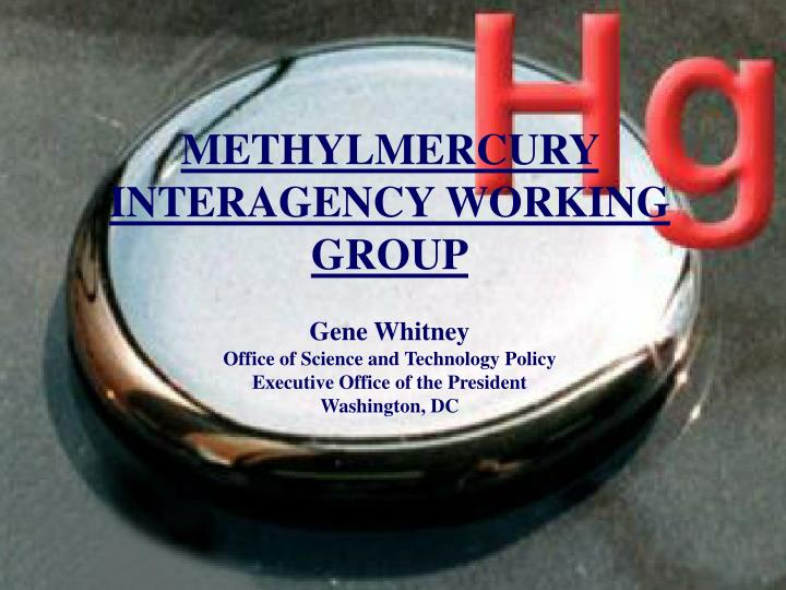 METHYLMERCURY INTERAGENCY WORKING GROUP