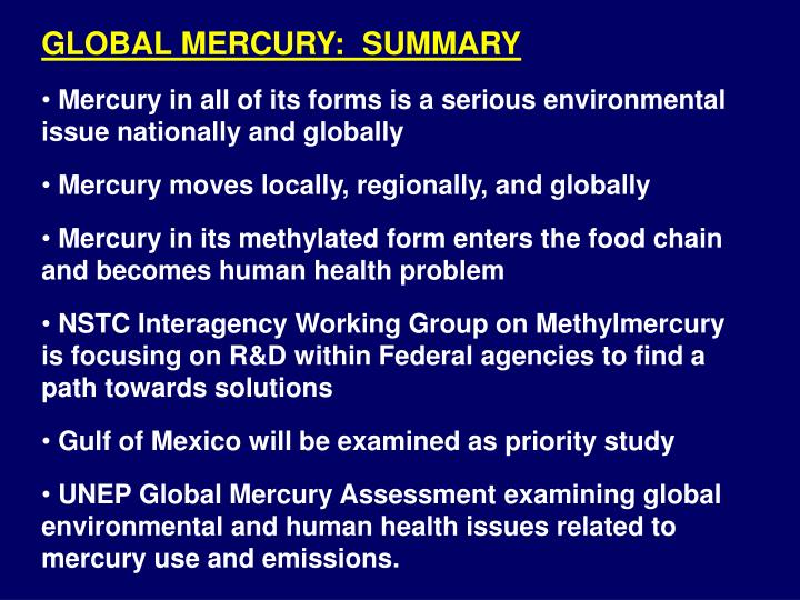 GLOBAL MERCURY:  SUMMARY