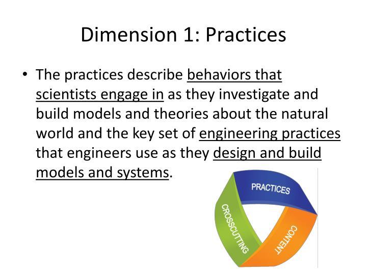Dimension 1: Practices