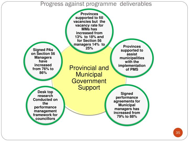 Progress against programme  deliverables