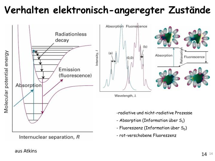 Verhalten elektronisch-angeregter Zustände