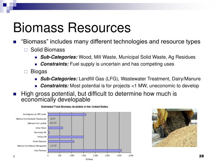 Biomass Resources