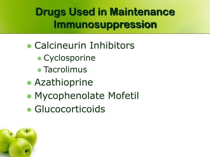 Drugs Used in Maintenance Immunosuppression