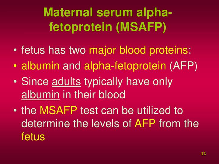 Maternal serum alpha-fetoprotein (MSAFP)