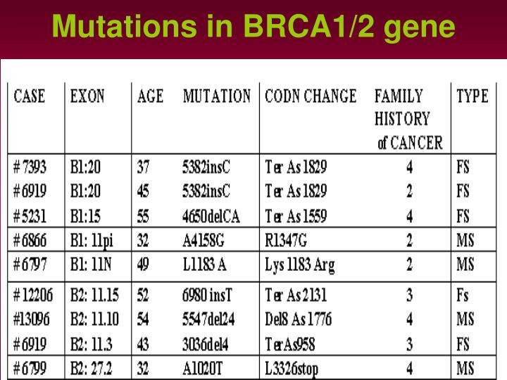 Mutations in BRCA1/2 gene
