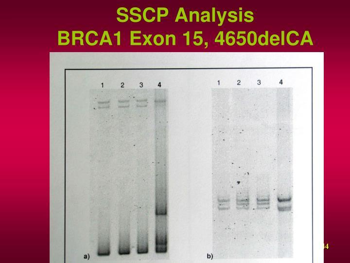 SSCP Analysis