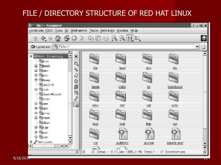 FILE / DIRECTORY STRUCTURE OF RED HAT LINUX