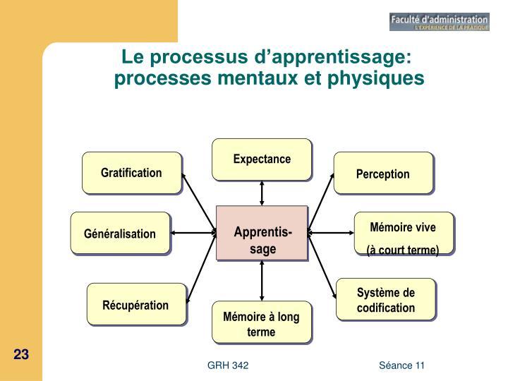 Le processus d'apprentissage:
