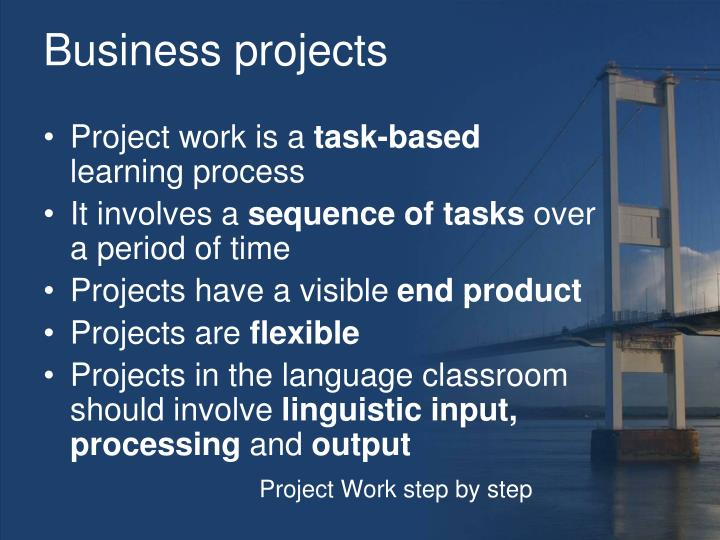 Business projects