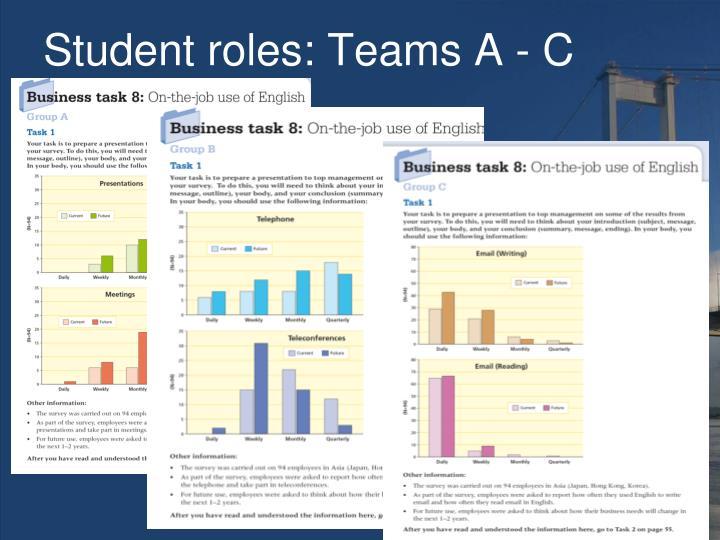 Student roles: Teams A - C