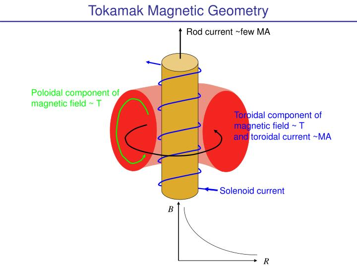 Tokamak Magnetic Geometry
