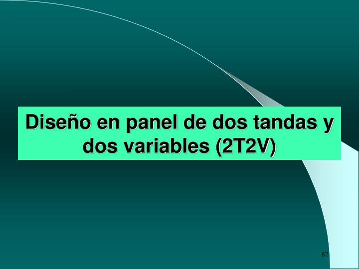 Diseño en panel de dos tandas y dos variables (2T2V)
