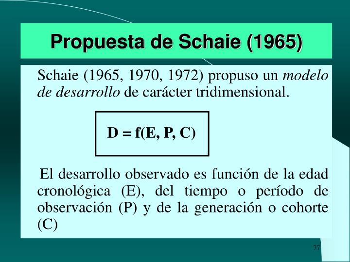 Propuesta de Schaie (1965)