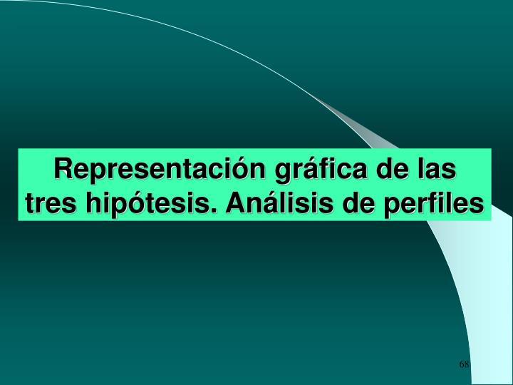 Representación gráfica de las tres hipótesis. Análisis de perfiles