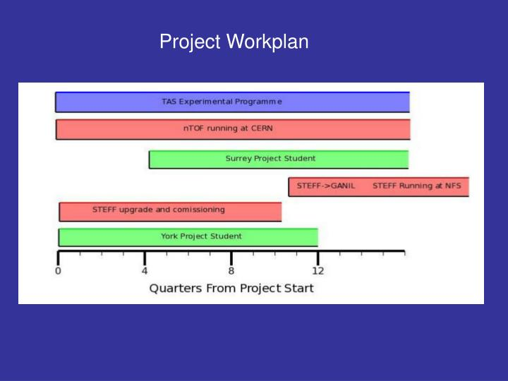 Project Workplan