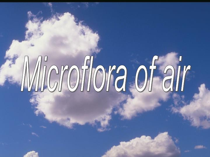 Microflora of air