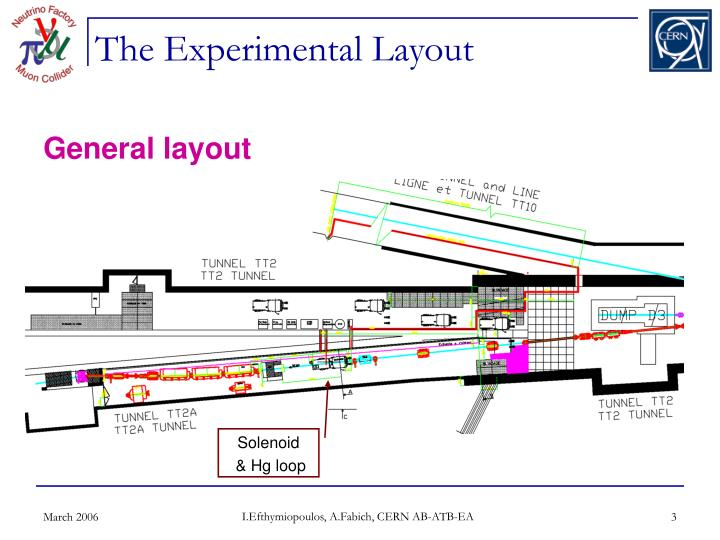 The Experimental Layout