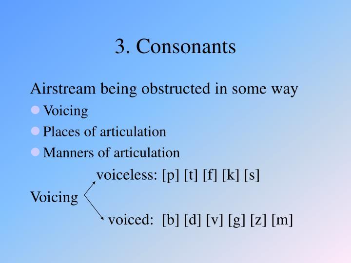 3. Consonants