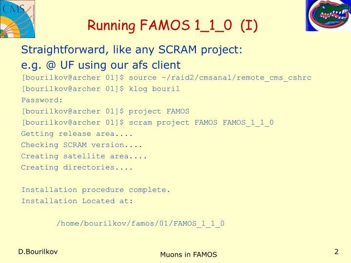 Running FAMOS 1_1_0  (I)