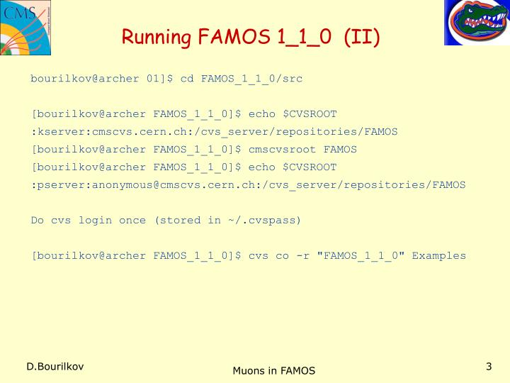 Running FAMOS 1_1_0  (II)