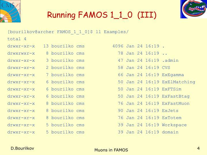 Running FAMOS 1_1_0  (III)