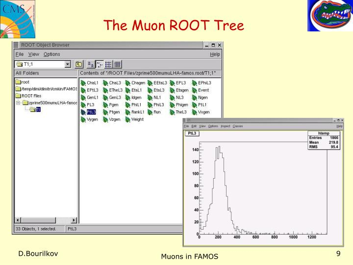 The Muon ROOT Tree