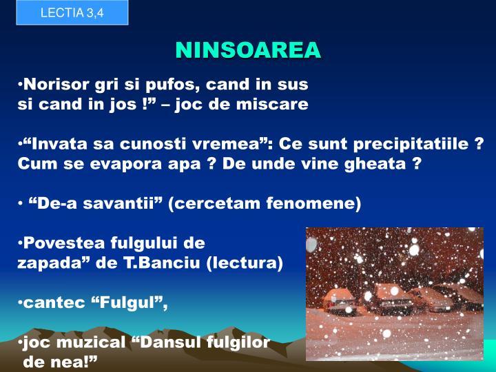NINSOAREA