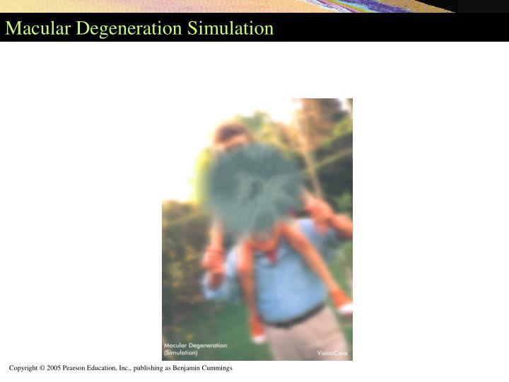 Macular Degeneration Simulation