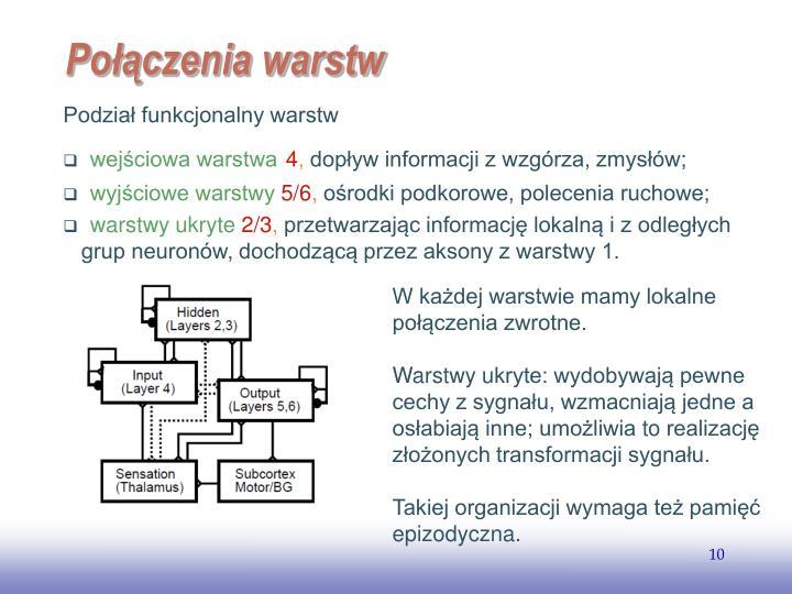 Podział funkcjonalny warstw