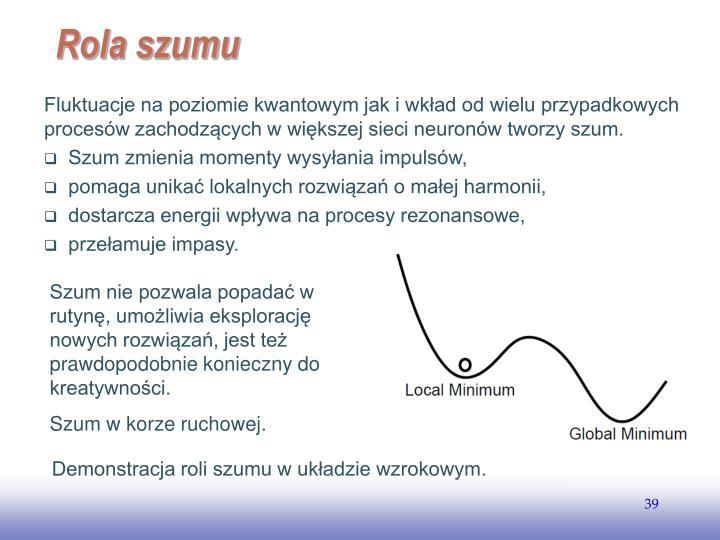 Fluktuacje na poziomie kwantowym jak i wkład od wielu przypadkowych procesów zachodzących w większej sieci neuronów tworzy szum.