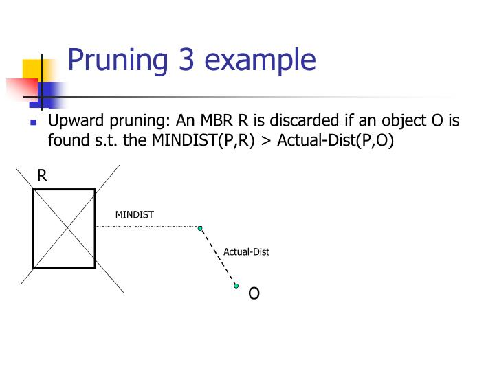 Pruning 3 example