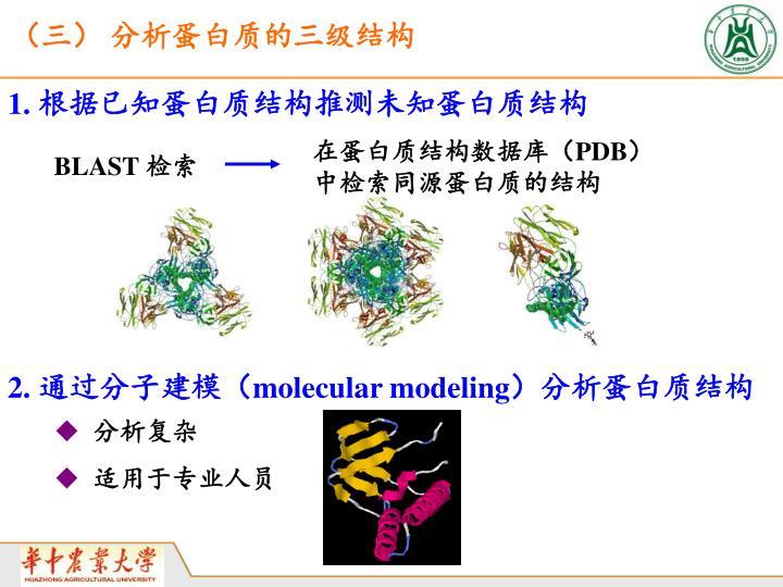 (三) 分析蛋白质的三级结构