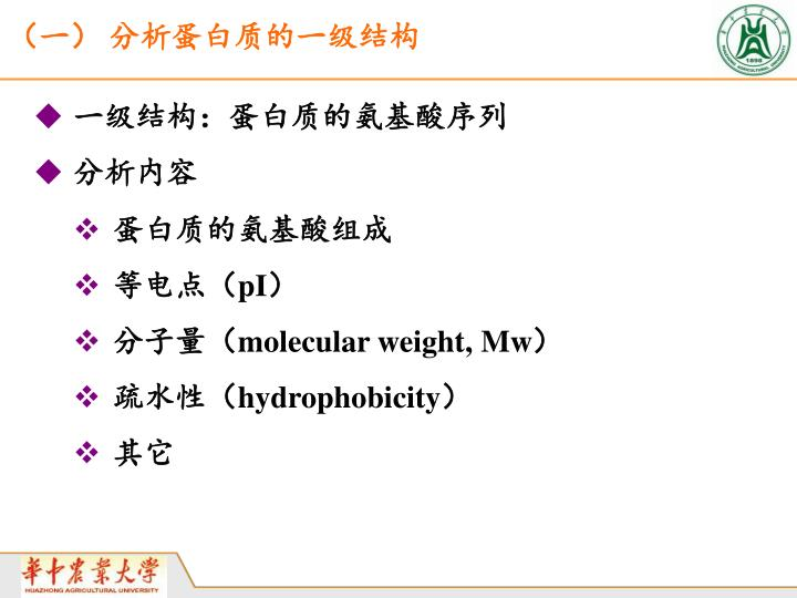 (一) 分析蛋白质的一级结构
