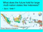 what does the future hold for large multi nation states like indonesia