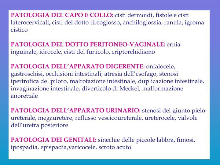 PATOLOGIA DEL CAPO E COLLO: