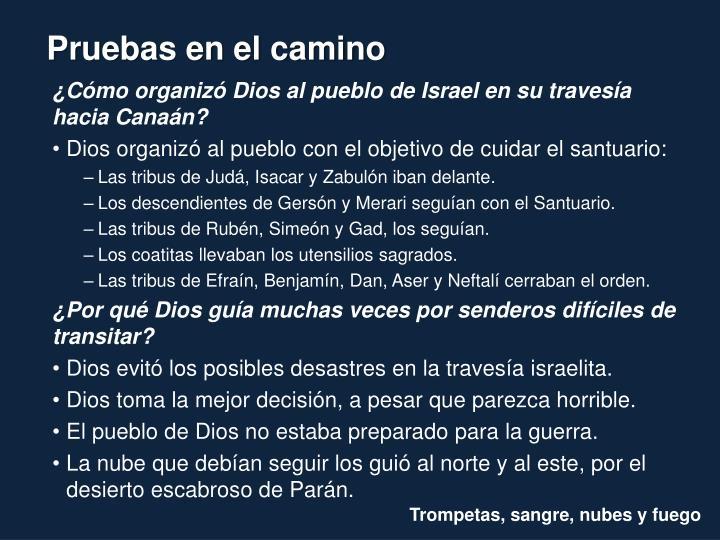 ¿Cómo organizó Dios al pueblo de Israel en su travesía hacia Canaán?