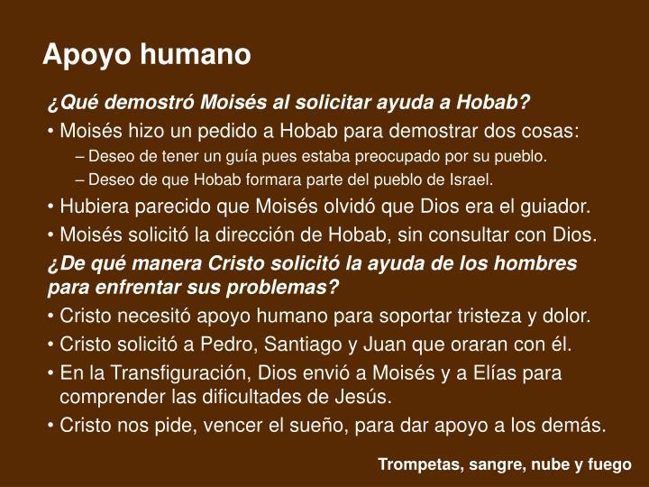 ¿Qué demostró Moisés al solicitar ayuda a Hobab?